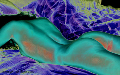Variations of a Nude - Variationen eines Aktes (10)